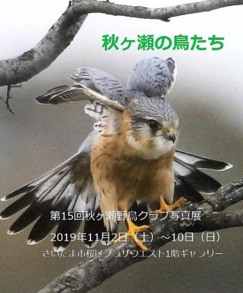 Photo_20191031190101